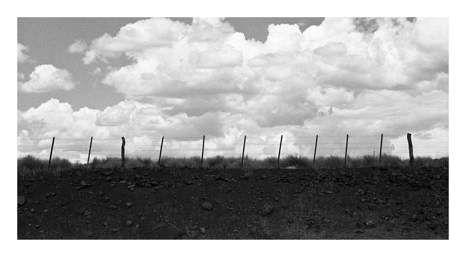 003 - Horizontes inciertos