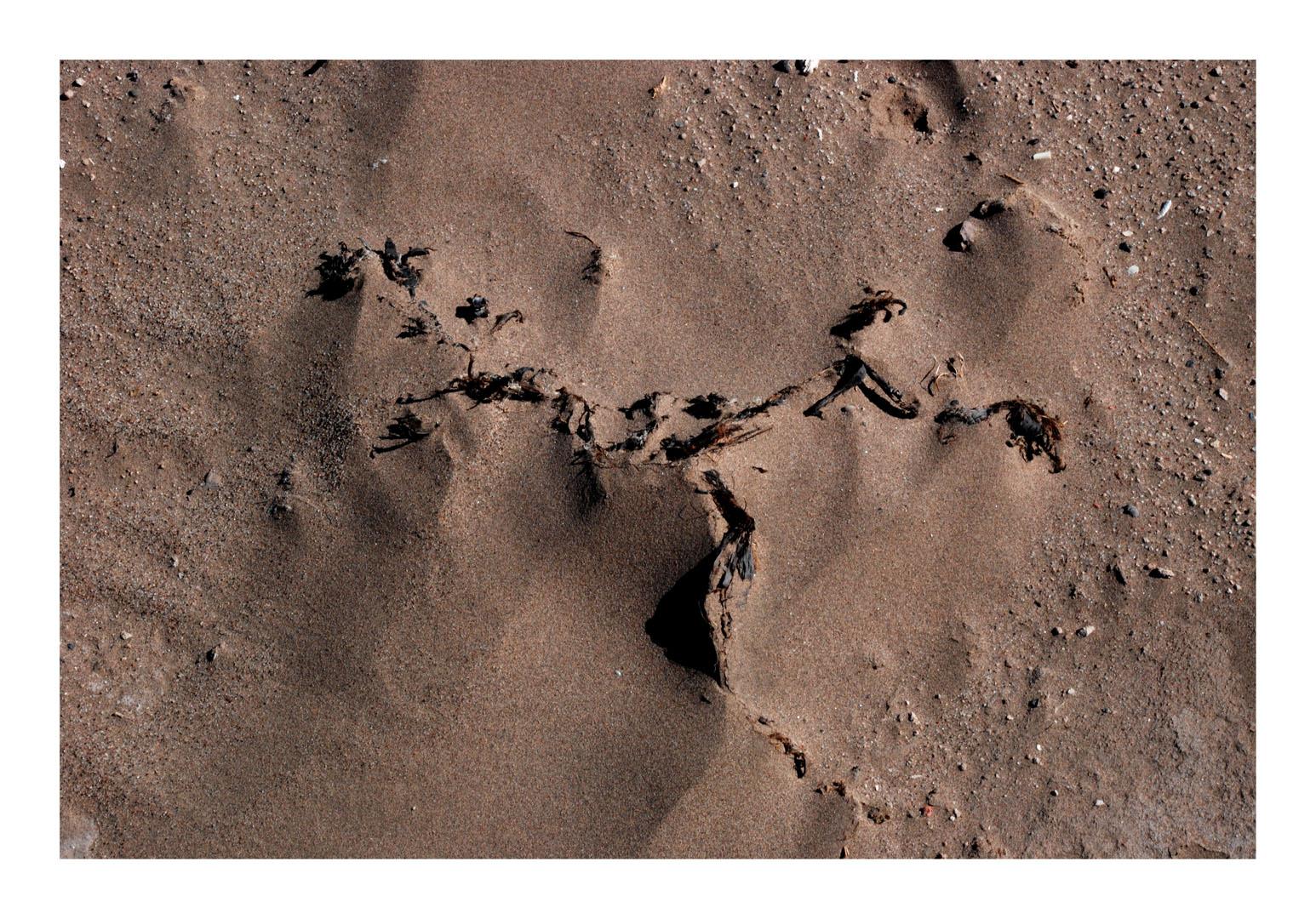 Reclamos de la arena