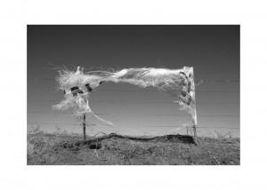 Promesas al viento